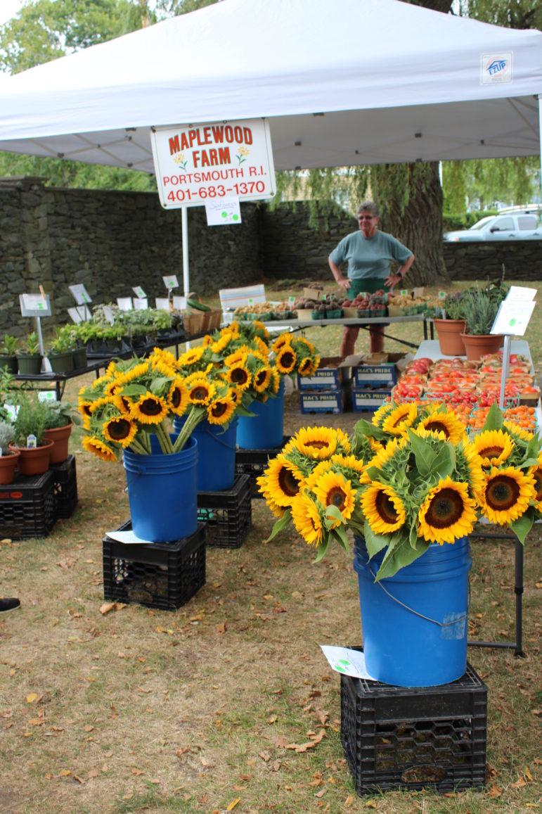 Farmers Market: Lots of bee bait.